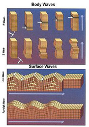 Body waves and surface waves. USGS