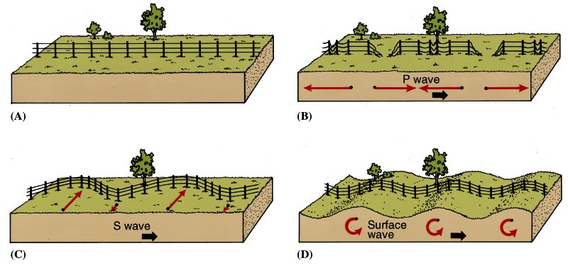 Movement of three types of earthquake waves  USGS