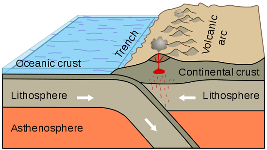 Convergent boundary in a subduction zone between a continental plate and an oceanic plate.  USGS