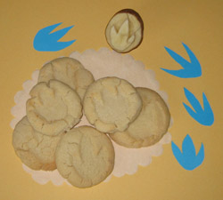 Dinosaur cookies, Photo by Myrna Martin