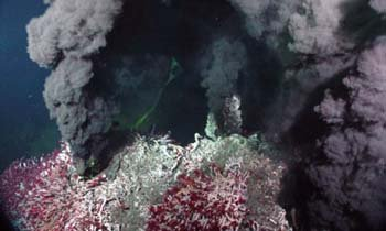 Black smokers, NOAA